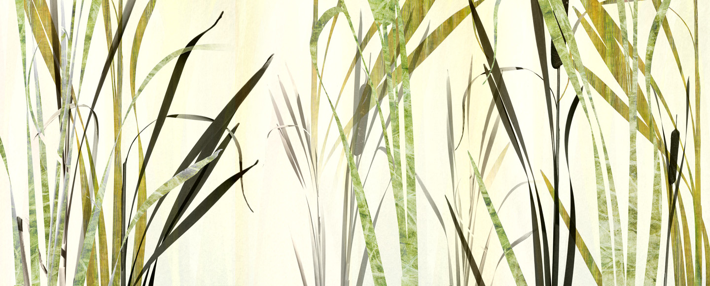 Cattail Yellow Silhouette 3