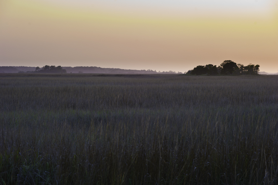 Hunter Island Marsh Evening 1