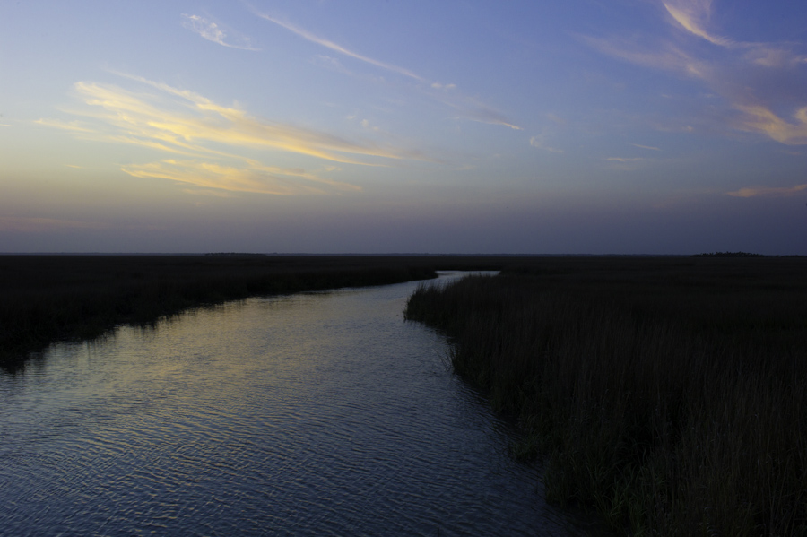 Hunter Island Marsh Evening 2
