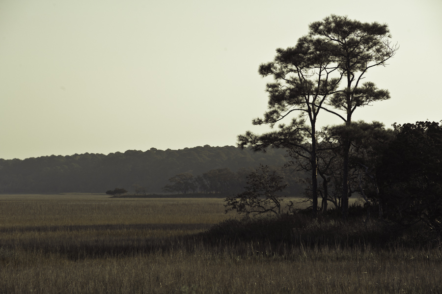 Hunter Island Marsh Dawn