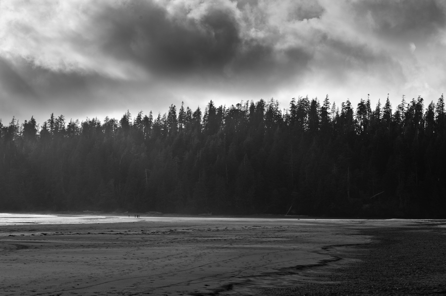 Bamfield Beach 3942